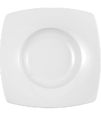 Plate deep with rim squared 24,5 cm